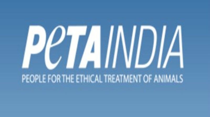 ethical treatment of animals essay Applying virtue ethics to our treatment of the other animals applying virtue ethics to moral issues should be straightforward the following essay appears in.