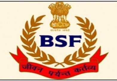 BSF arrests Pakistan national at Wagah