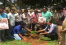 Saplings planted to mark birthday of Ganapathi Sachidananda seer