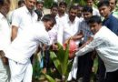 Kempegowda jayanti observed by planting saplings